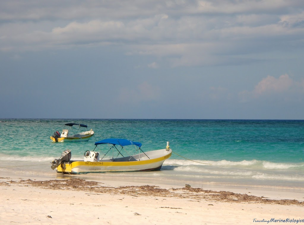 Playa del Carmen the Best for Last in the Majestic Mexico Venture; Reasons Why I Adore Mexico
