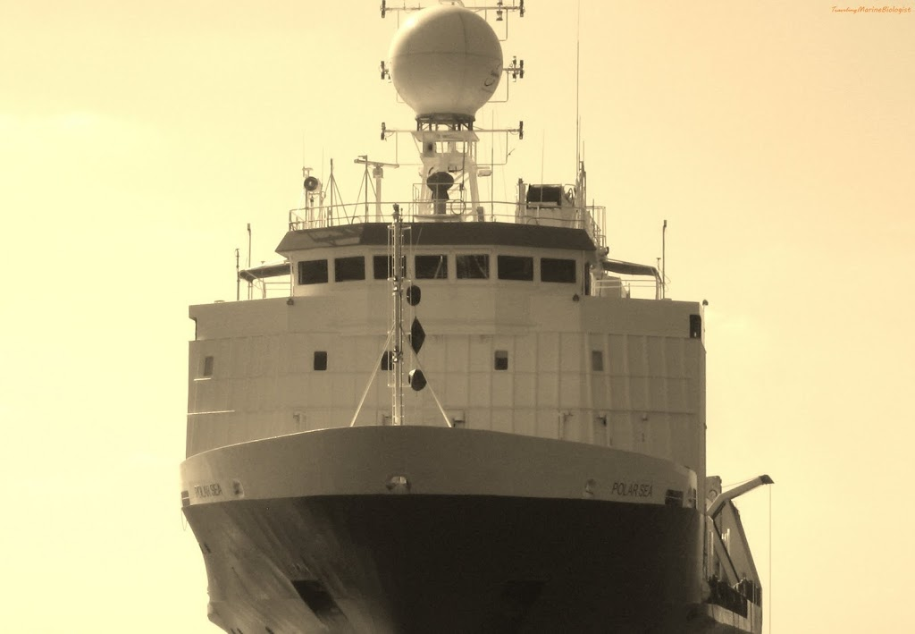 Embark to the Polar Sea; a Closer Approach to Hurricane Season