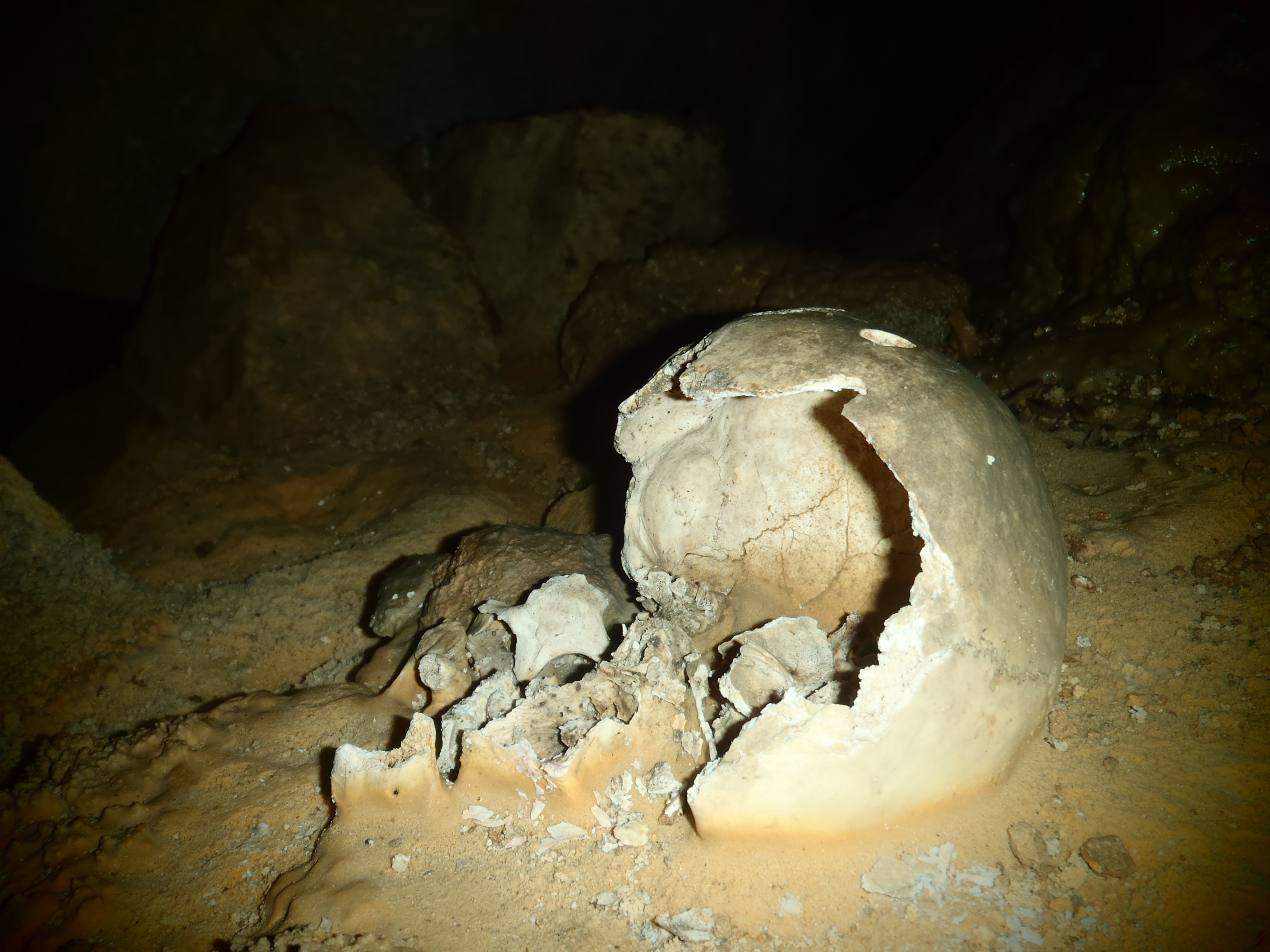 Ancient Mayan Remains in Crystal Cave; Belmopan, Belize; 2013