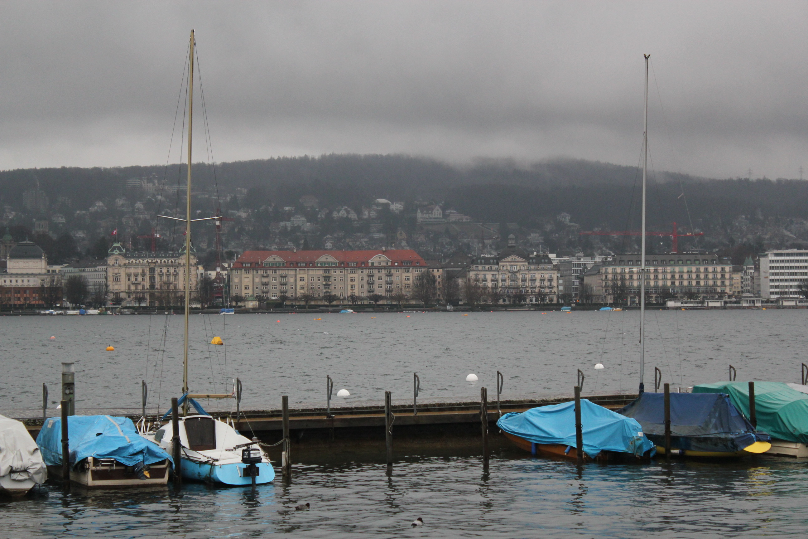 View of the Lake; Zurich, Switzerland; 2011
