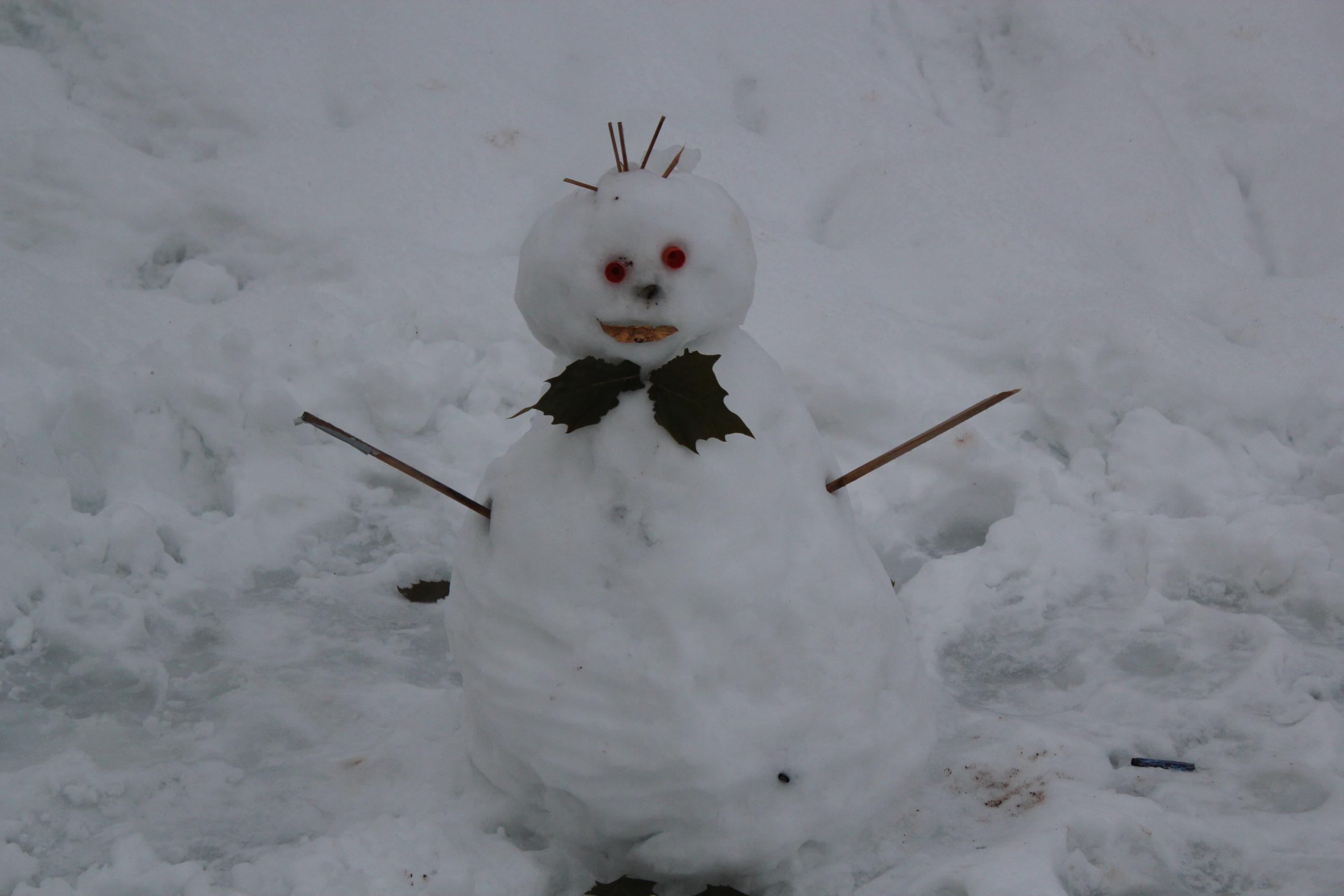 Snowman; Innsbruck, Austria; 2012