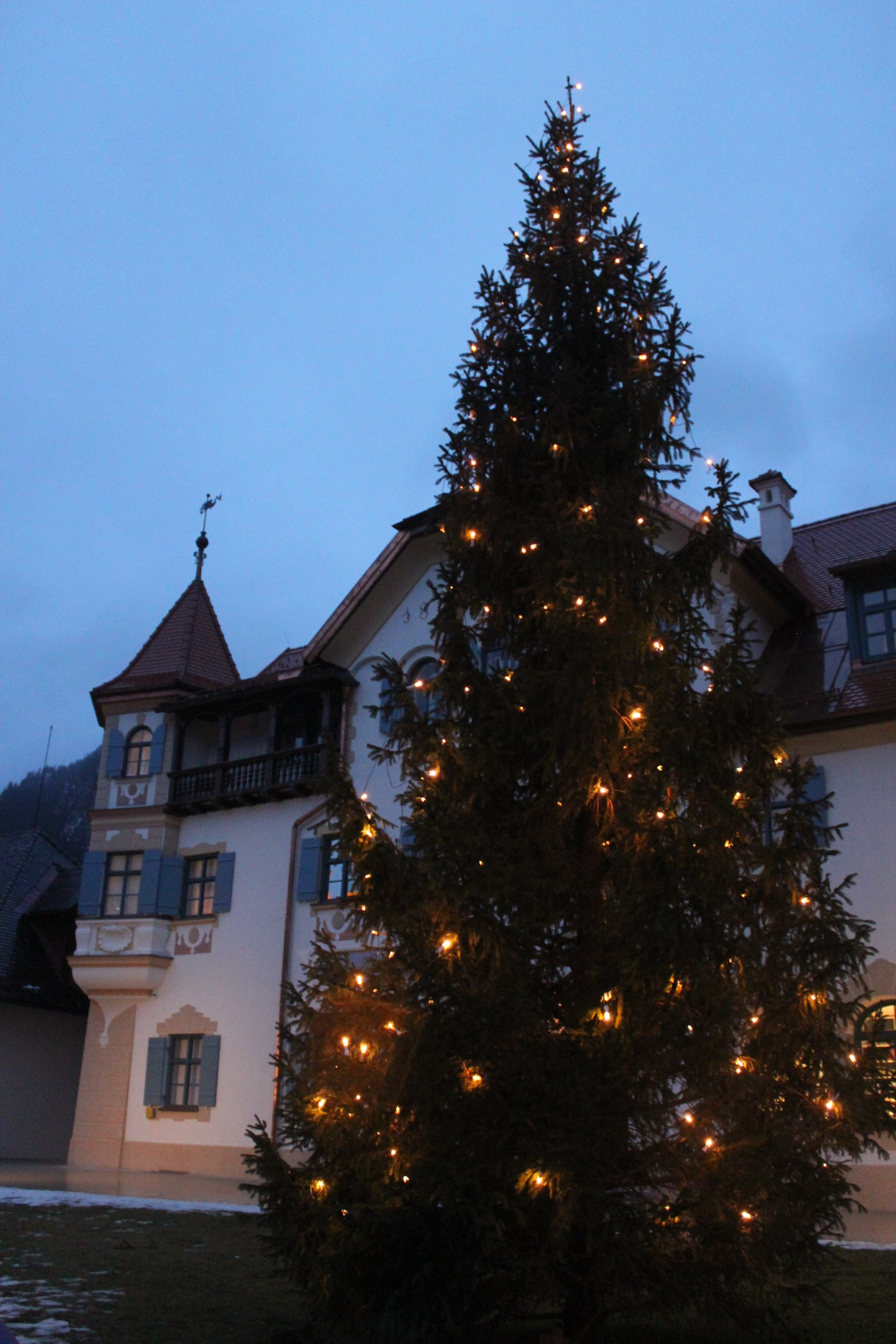 Christmas Tree in Schwangau Village; Germany; 2012