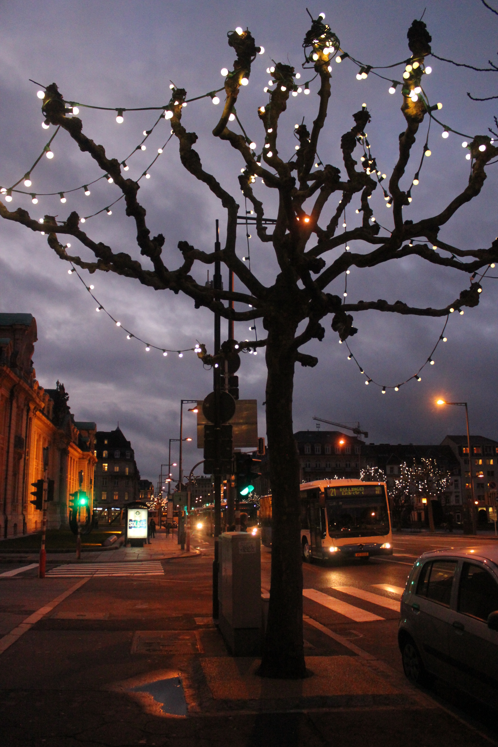 First Christmas Tree; Luxembourg City, Luxembourg; 2012