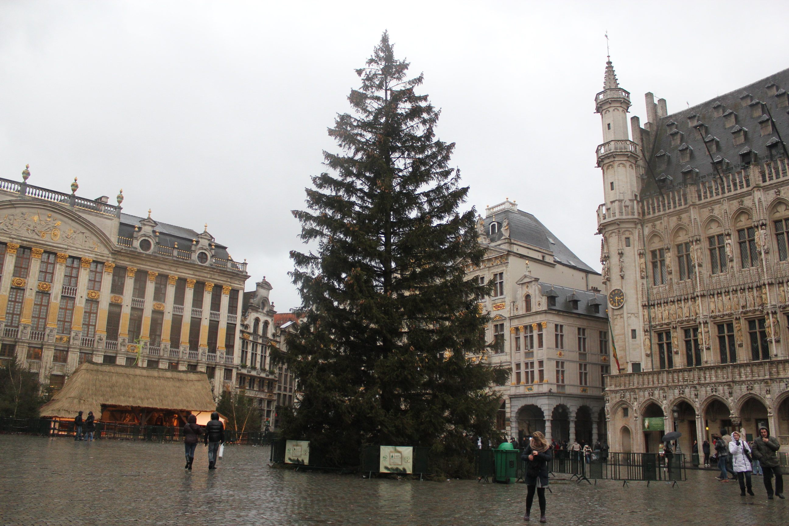 Christmas Tree; Brussels, Belgium; 2012