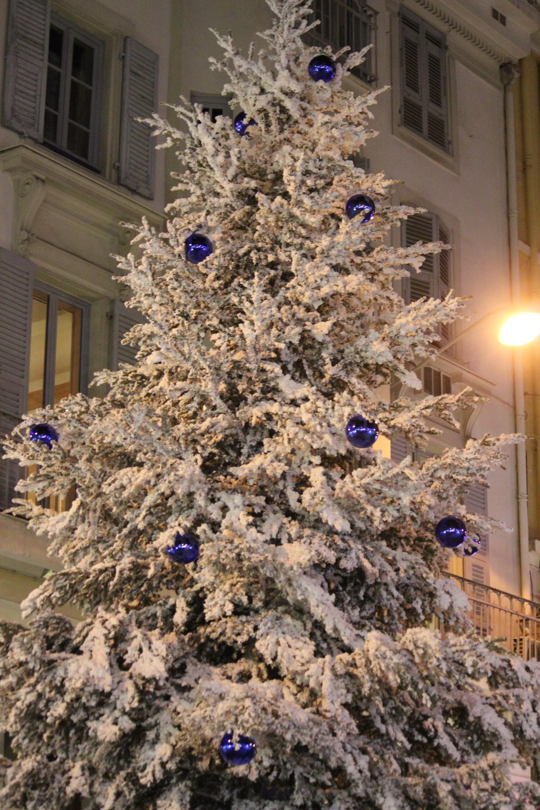 Christmas Tree; Nice, France; 2011