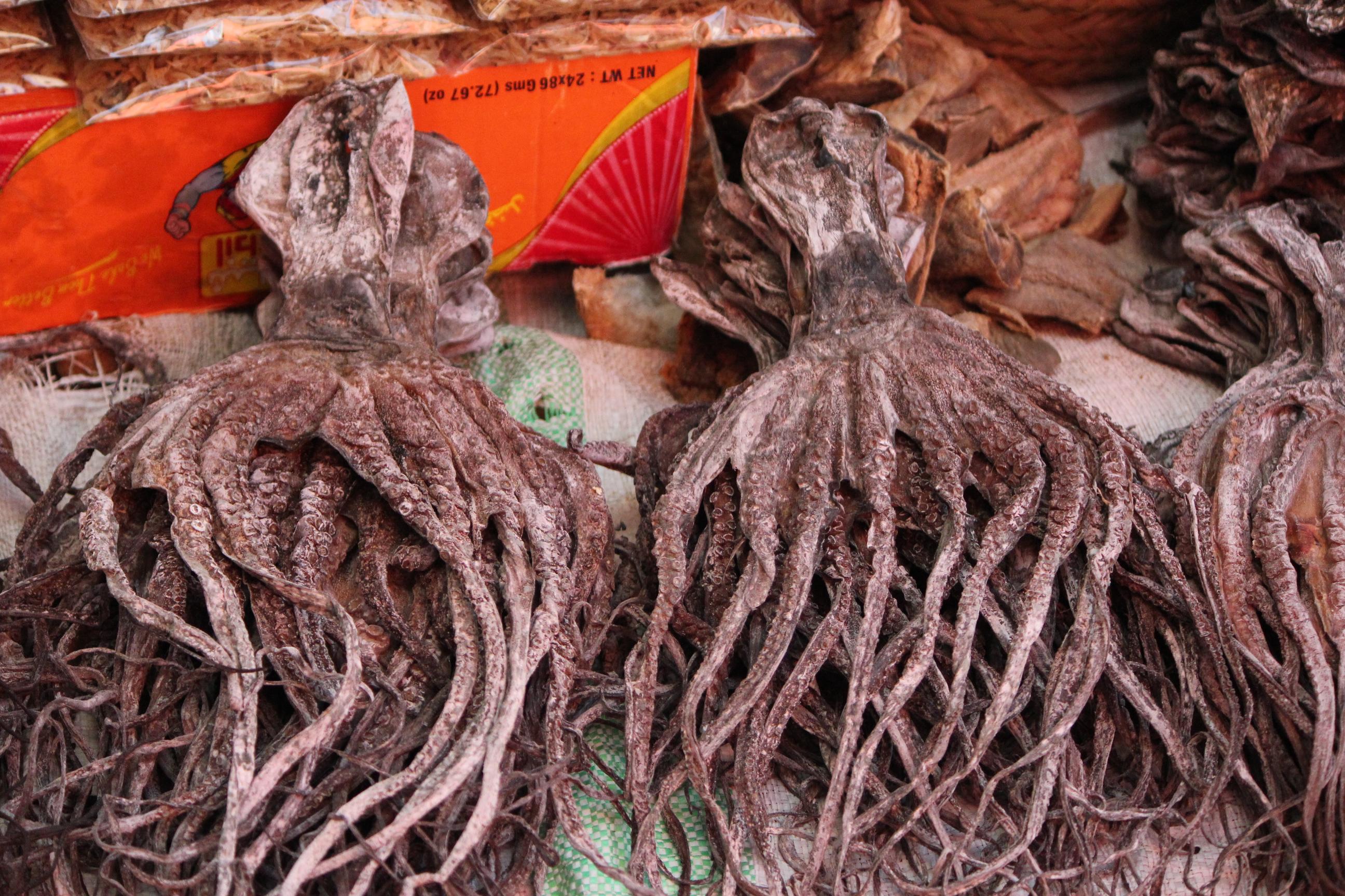 Dried Octopus; Stone Town (Darajani Market), Zanzibar, Tanzania; 2011