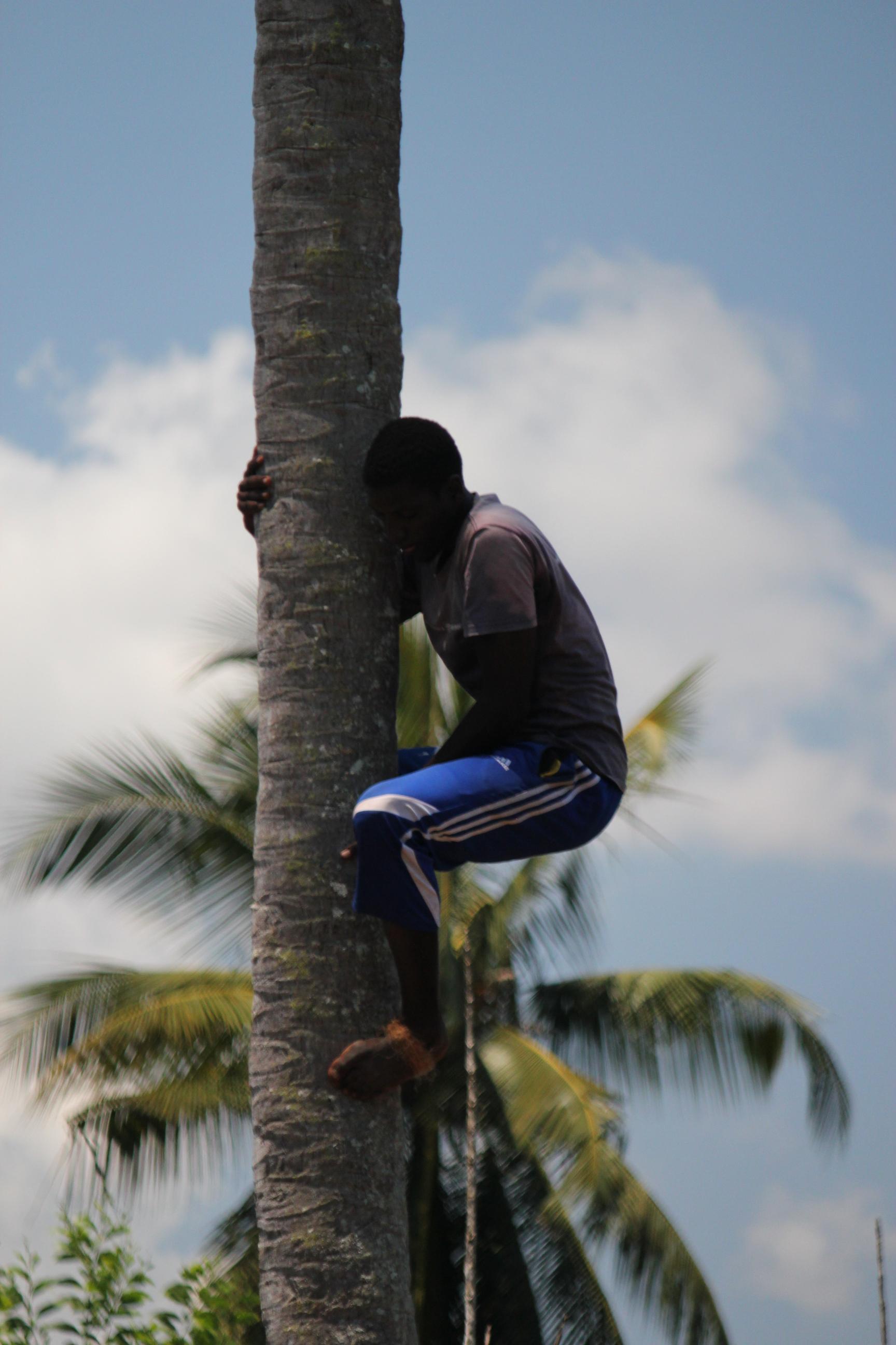 Dedication; Stone Town, Zanzibar, Tanzania; 2011