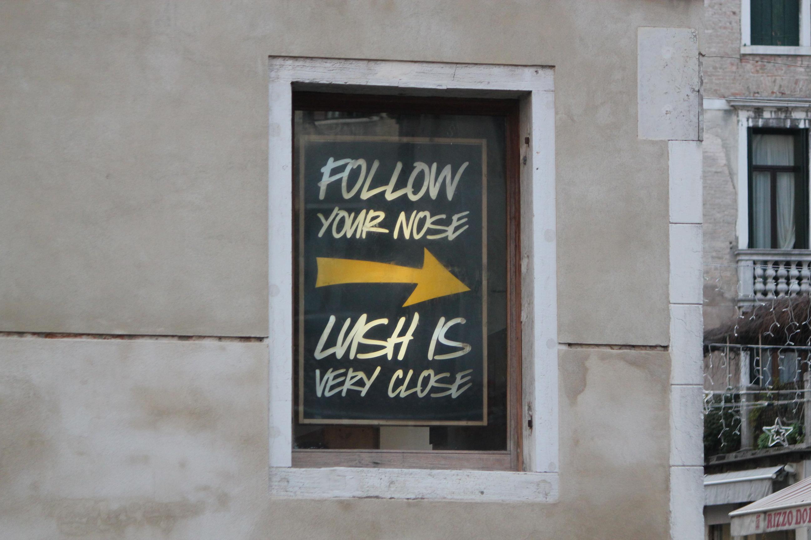 Follow Your Nose; Venice, Italy; 2011