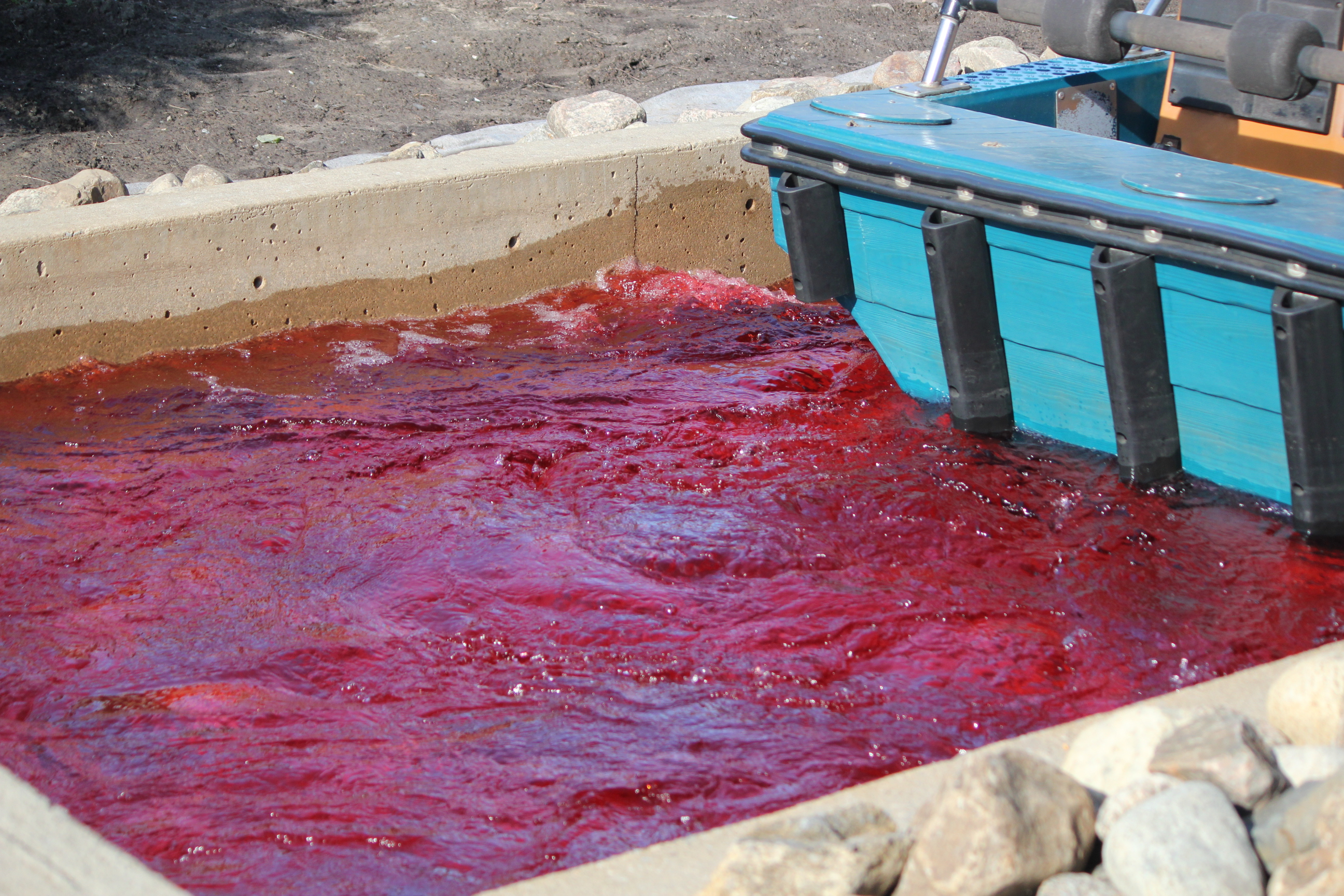 Blood Water; Montreal, Canada; 2011