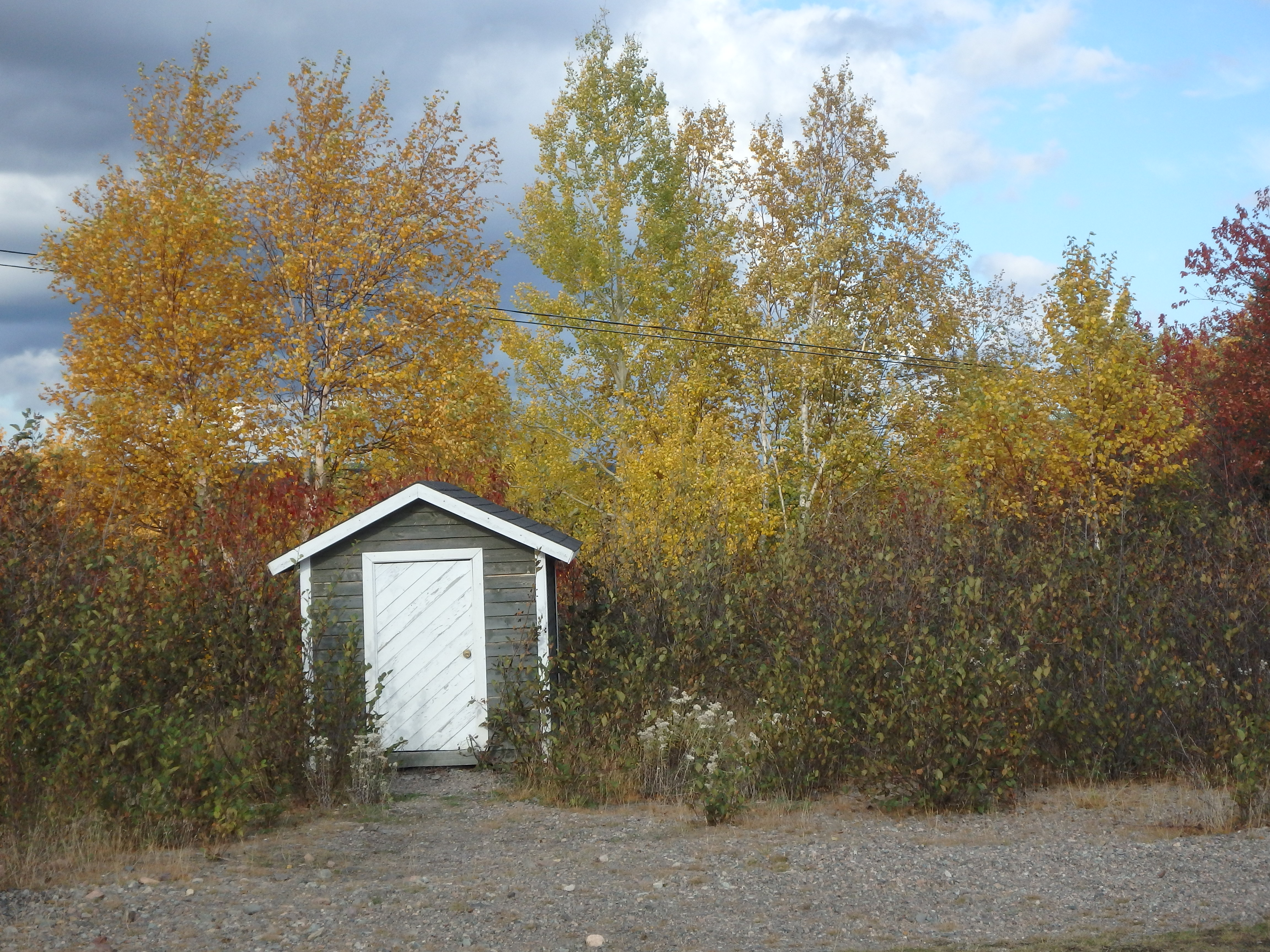 Lonely Shed; Newfoundland, Canada; 2015